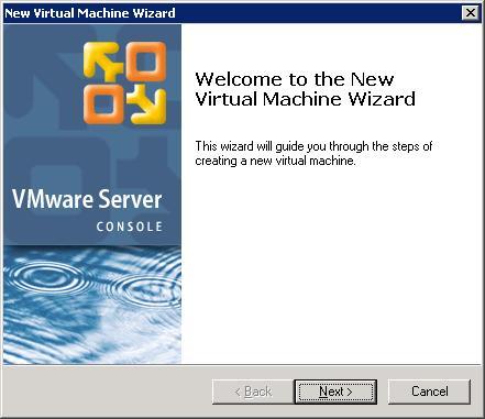Installing Ubuntu and Windows XP (dual boot) in a VM